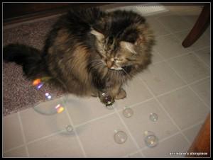 Sasha bubbles