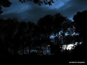 blue light evening