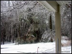 ice damage